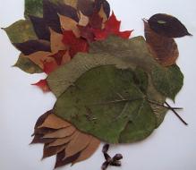 Herbst Teil 2 Bastelideen Fur Den Kindergarten Die Fachseite Fur